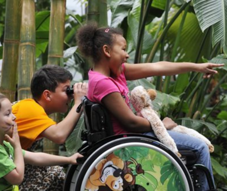 Zippie simba pediatric wheelchair